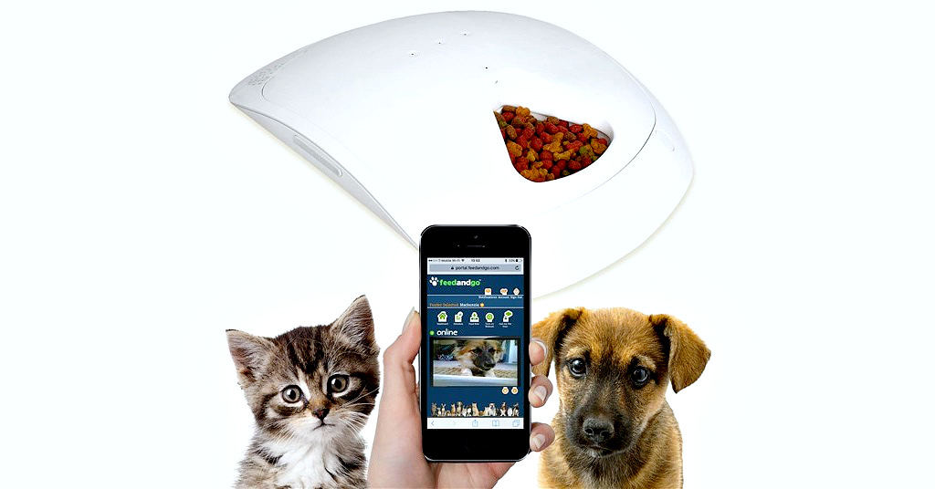 Hraneste animalul de companie intr-un mod inteligent cu Feed and Go Smart Pet Feeder